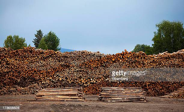 Logs sit stacked at the West Fraser Timber Co sawmill in Quesnel British Columbia Canada on Thursday July 11 2013 West Fraser Timber Co the largest...