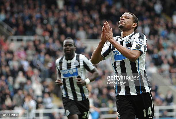 Loic Remy of Newcastle celebrates after scoring the second goal during the Barclays Premier League match between Newcastle United and Cardiff City at...
