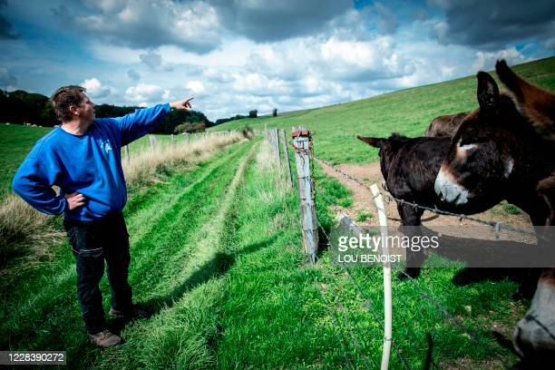 Loick Crampon, farmer, points at the place where one of his donkeys was attacked and killed in the night of June 17 to June 18, near Grumesnil,...