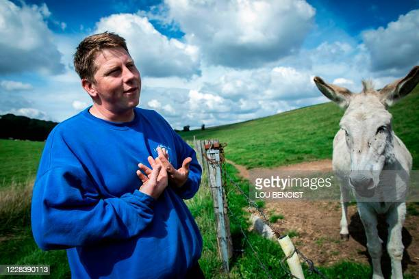 Loick Crampon, farmer, speaks past one of his donkeys, near Grumesnil, northern France on September 7, 2020. - One of Crampon's donkey has been...
