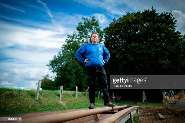 Loick Crampon, farmer, waits for his cows in his field, near Grumesnil, northern France on September 7, 2020. - One of Crampon's donkey has been...