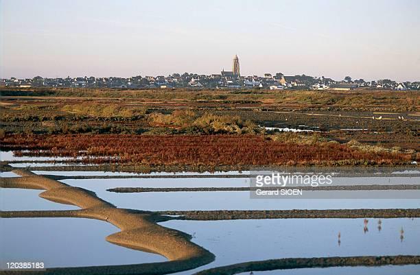 Loire Atlantique in Batz Sur Mer France Guerande peninsula its salt marshes Batzsurmer in the background