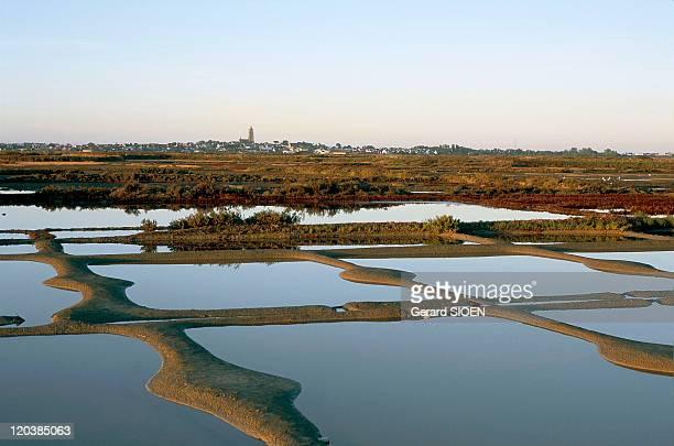 Loire Atlantique in Guerande France Guerande peninsula its salt marshes Batzsurmer in the background