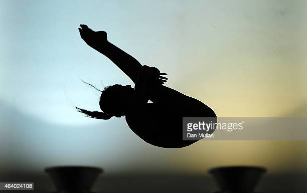 Lois Toulson of City of Leeds Diving Club competes in the Womens Platform Preliminary during Day Two of the British Gas Diving Championships at the...