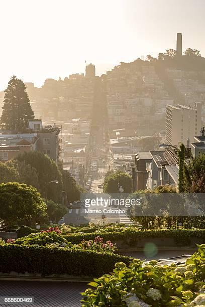 lombard street at sunset, san francisco, usa - lombard street san francisco stock pictures, royalty-free photos & images