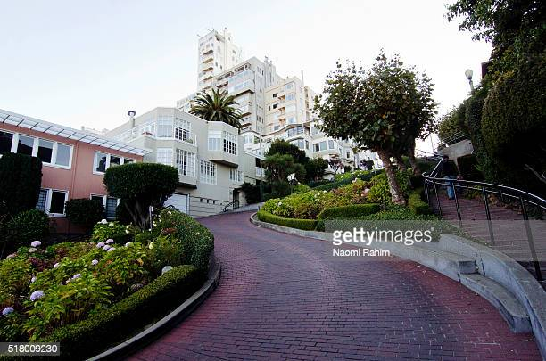 lombard street, san francisco, california, usa - lombard street san francisco stock pictures, royalty-free photos & images