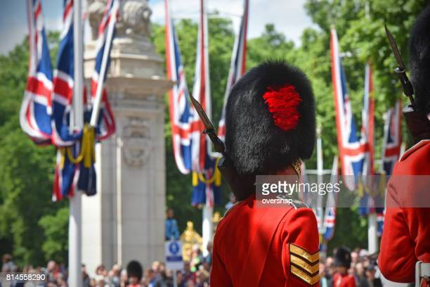 london bearskin - bearskin hat stock pictures, royalty-free photos & images