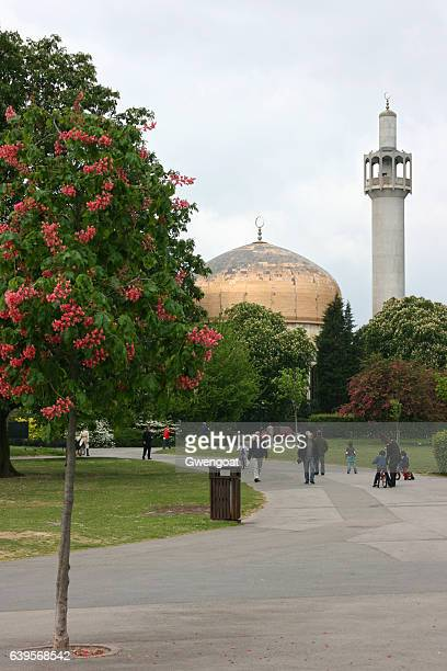 london central mosque - mosque stock photos and pictures
