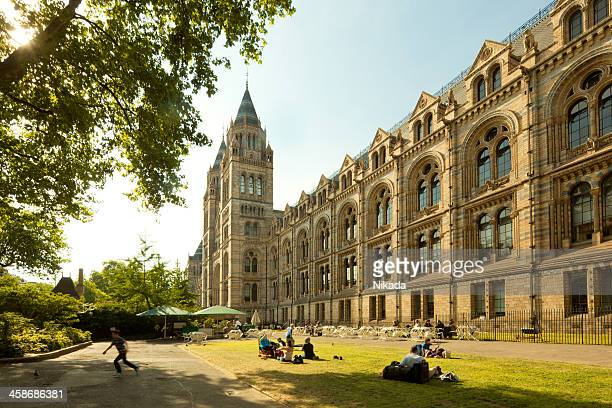 london natural history museum - natural history museum london stock pictures, royalty-free photos & images