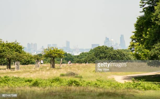 london skyline from richmond park - richmond upon thames stock pictures, royalty-free photos & images
