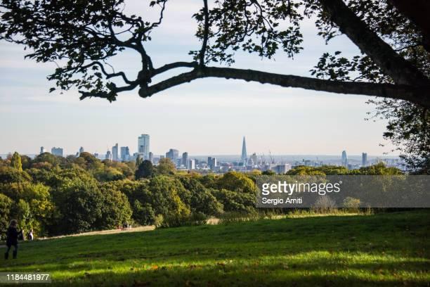 london skyline seen from heampstead heath - highgate stock-fotos und bilder