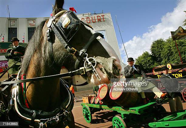 London, United Kingdom: Horse-drawn drays are pictured during a welcome parade of British brewers outside Earls Court in central London, 31 July...