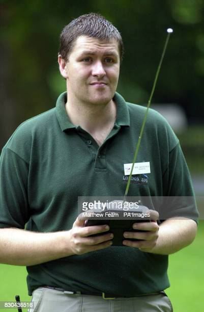 London Zoo senior keeper Andy Goodchild operates a modified remote control toy car that controls Brian the bionic bunny Brian is being used to train...