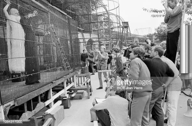 Londres RoyaumeUni 19 septembre 1966 Le tournage du film 'A coeur joie' de Serge BOURGUIGNON Scène filmée au zoo de Londres Vue de l'équipe de...