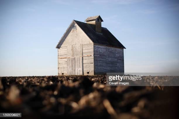 lone barn in a cornfield - ペオリア ストックフォトと画像