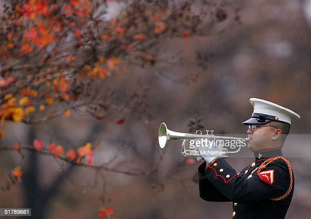 A lone bugler plays Taps during funeral services for US Marine Corps Cpl Nicholas L Ziolkowski at Arlington National Cemetery November 24 2004...