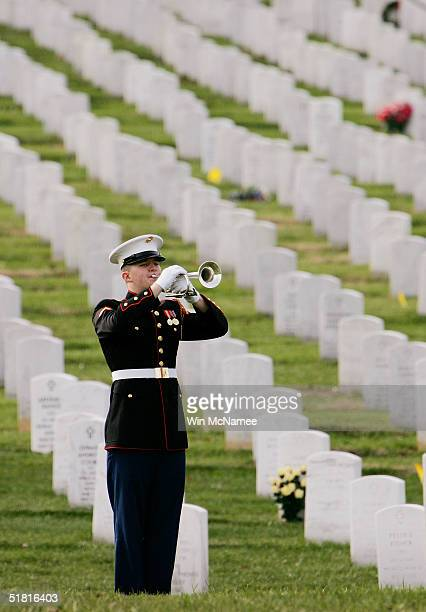 A lone bugler plays 'Taps' during the funeral service of Lance Cpl Dimitrios Gavriel at Arlington National Cemetery December 2 2004 in Arlington...