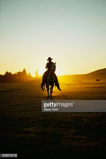 lone cowboy - american culture stock pictures, royalty-free photos & images