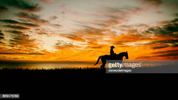 lone cowboy - appaloosa stock pictures, royalty-free photos & images