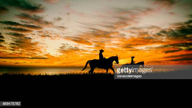 lone cowboy - wild west stock pictures, royalty-free photos & images