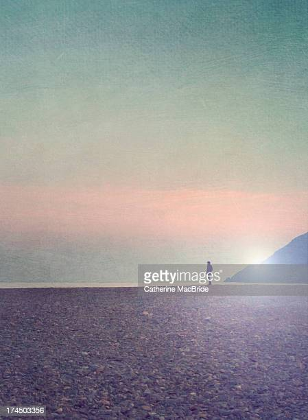 lone figure looking out to sea - catherine macbride fotografías e imágenes de stock