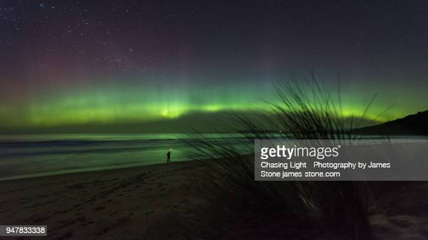 lone figure on a beach with a beautiful aurora overhead. - aurora australis stock pictures, royalty-free photos & images