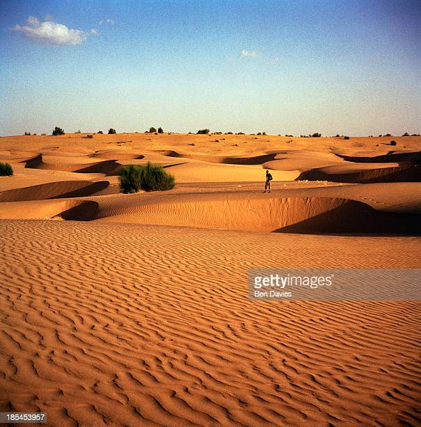 Thar Desert Stock Photos and Pictures | Getty Images