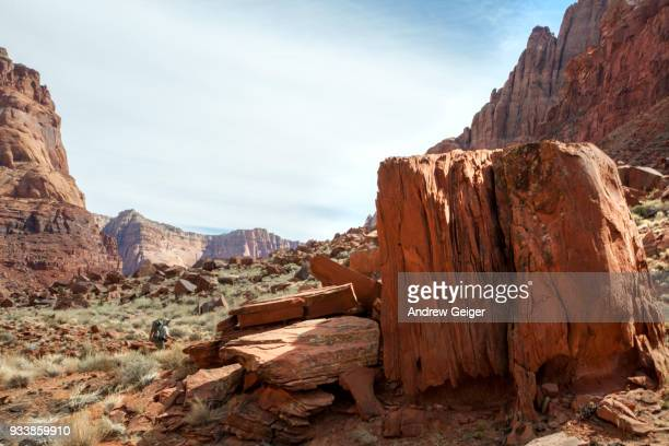 Lone man hiking along footpath in red desert canyon landscape environment.