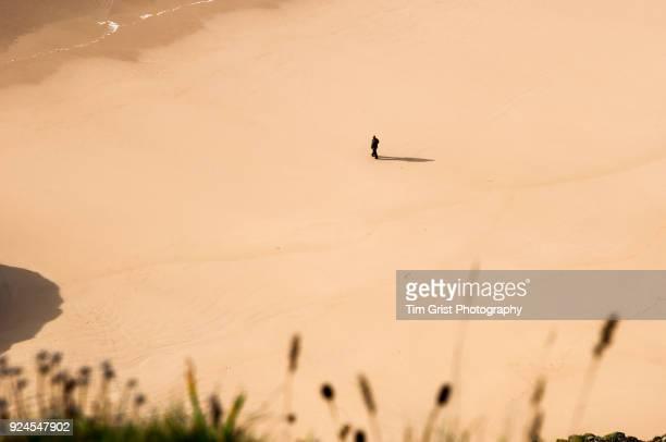 Lone Man Walking on a Beach