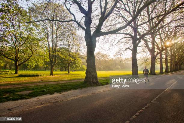 Lone morning jogger keeping fit despite the lockdown in an empty Green Park on 16th April 2020 in London United Kingdom Normally crowded with people...