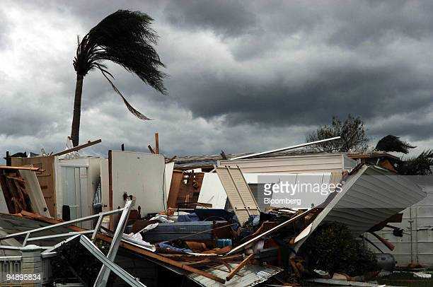 A lone palm tree stands by a demolished mobile home in the Park City Estates in Davie Florida following Hurricane Wilma making landfall Monday...