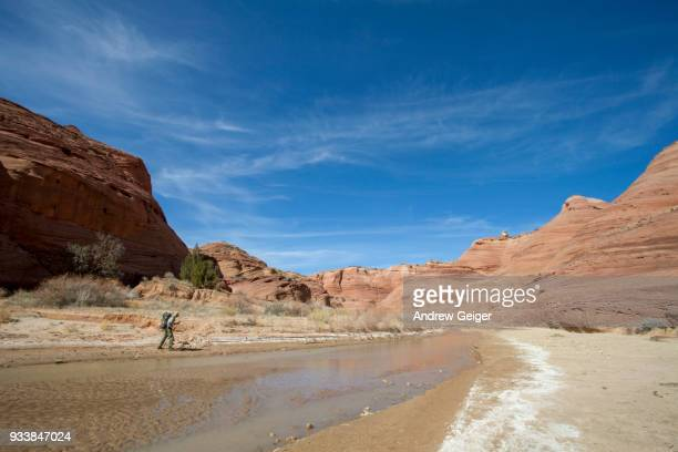 Lone person hiking through landscape of deep dramatic red rock desert slot canyon along river.