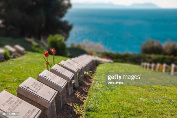 lone pine cemetary - anzac day stock pictures, royalty-free photos & images