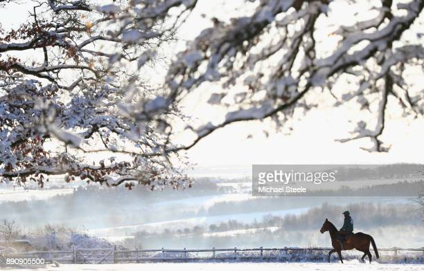 A lone rider and horse heads out towards the polytrack gallops in heavy snow at the yard of national hunt trainer Nigel TwistonDavies on December 12...