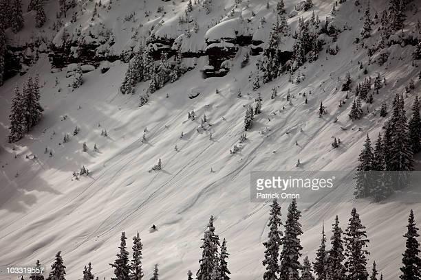 A lone skier gets first tracks in deep powder in Colorado.