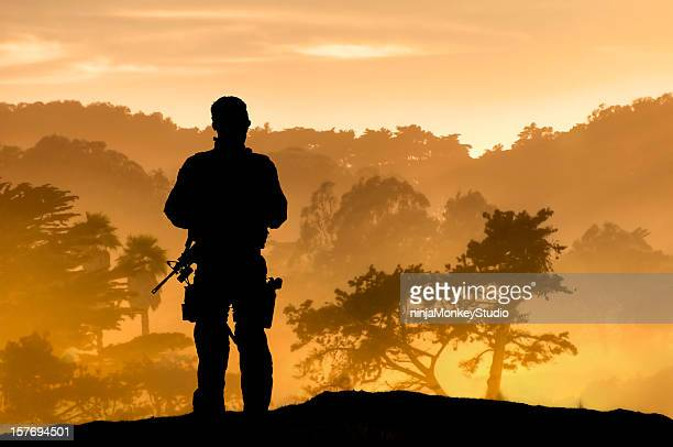 lone soldier overlooking tropical forest - war stock pictures, royalty-free photos & images
