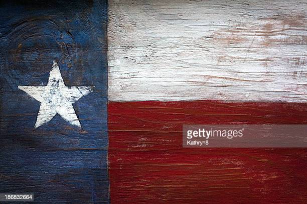 Lone Star State Flag