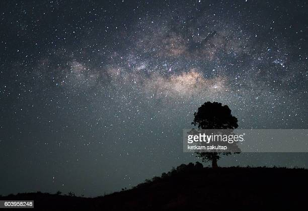 Lone tree and Milkyway