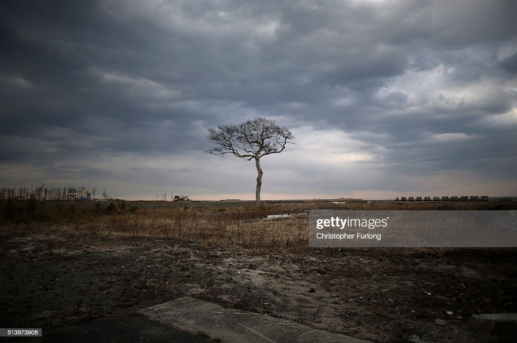 A lone tree sits on the tsunami scarred landscape, inside the exclusion zone, close to the devastated Fukushima Daiichi Nuclear Power Plant on February 26, 2016 in Namie, Fukushima Japan, Thousands of homes used to stand here, the area is now closed to residents due radiation contamination from the Fukishima nuclear disaster. March 11, 2016 marks the fifth anniversary of the magnitude 9.0 earthquake and tsunami which claimed the lives of 15,894, and the subsequent damage to the reactors at TEPCO's Fukushima Daiichi Nuclear Power Plant causing the nuclear disaster which still forces 99,750 people to live as evacuees away from contaminated areas.