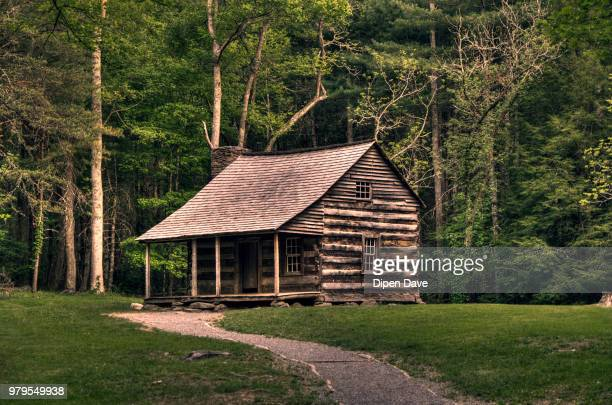lone wooden cabin in woods - log cabin stock pictures, royalty-free photos & images