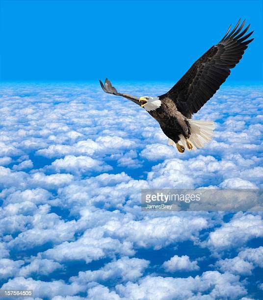 Solitude sur le dessus; Bald Eagle s'élevant au-dessus des nuages