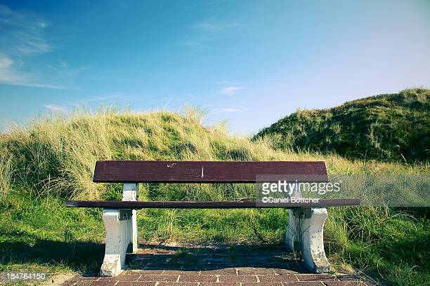 Lonely bench in the dunes