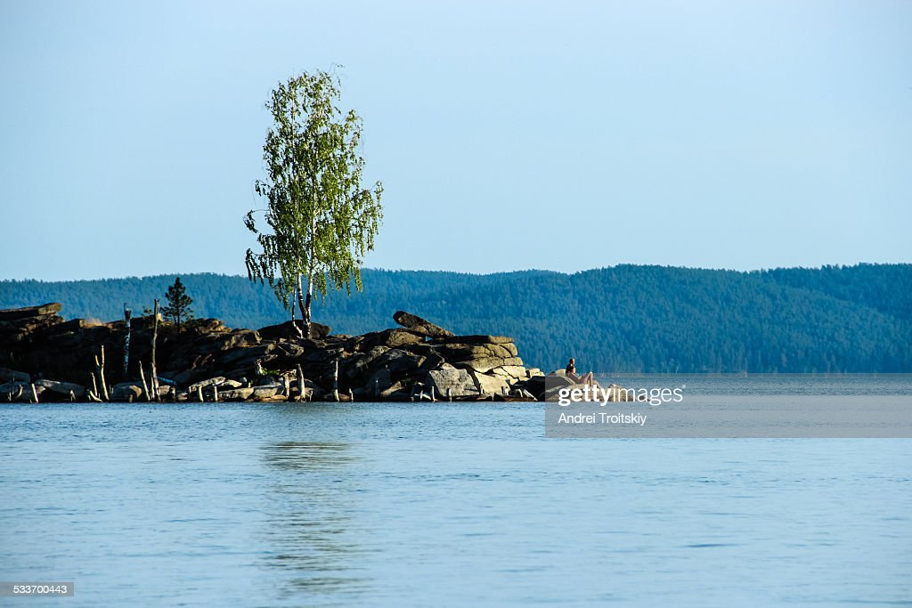 Lonely birch on the rocky coast by the lake : Foto stock