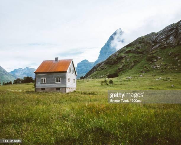 lonely cabin in lofoten - anhöhe stock-fotos und bilder