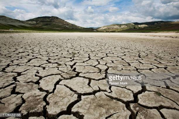 a lonely cracked earth desert floor - drought stock pictures, royalty-free photos & images