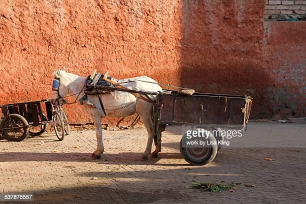 Lonely Donkey Cart, Marrakech