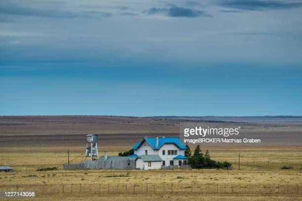 lonely farm in the chilean pampas, patagonia, region de magallanes y de la antartica chilena, patagonia, chile - pampa stock-fotos und bilder