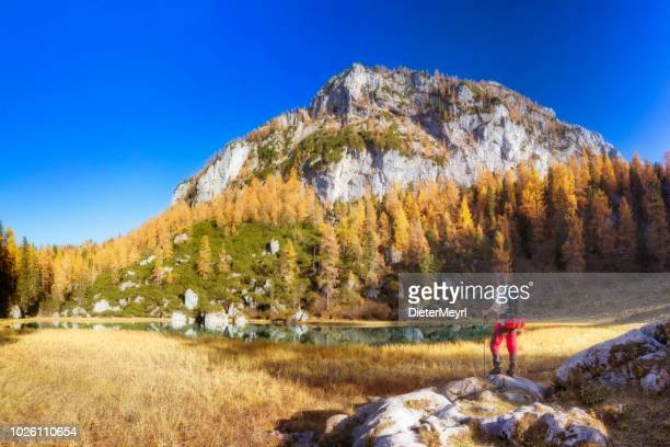 lonely hiker at alpin lake schwarzensee in fall, nationalpark berchtesgaden - alps - königssee bavaria stock photos and pictures