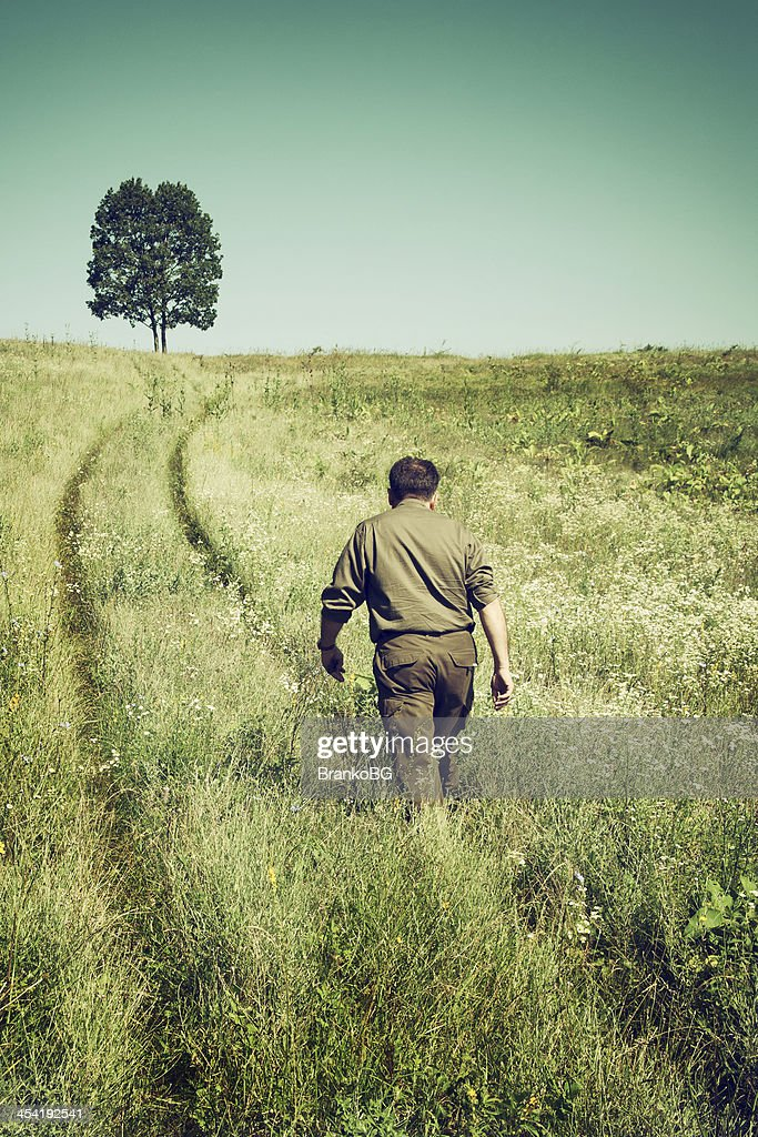 lonely road in a field : Stock Photo