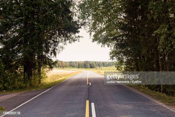 a lonely road leads winding to the horizon under the tree branches at the rural finland. - heinovirta stock pictures, royalty-free photos & images